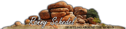 Ronny Schedel - Traveling Around The World