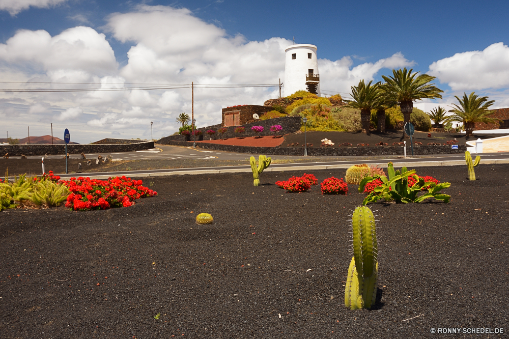Lanzarote Himmel Landschaft Reisen Baum Haus Gebäude Park Architektur Stadt im freien Entwicklung des ländlichen Supermarkt Bäume Wasser Straße Tourismus Stadt Garten Szenerie Müll Landschaft alt Lebensmittelgeschäft Sommer landschaftlich Straße Wolken Blume traditionelle im freien Urban Hügel Gras Berge Pflanze Bauernhof Hügel Szene Wolke Kultur Turm Marktplatz Landwirtschaft Wald Blumen sonnig Verkäufer Feld Fahrzeug See Umgebung Licht fallen Horizont Auto Stein natürliche Struktur An Herbst Land bunte Frühling Palast Ozean berühmte Tourist Urlaub Berg Verkehr Startseite Transport Religion Geschichte Meer sky landscape travel tree house building park architecture city outdoors rural supermarket trees water road tourism town garden scenery rubbish countryside old grocery store summer scenic street clouds flower traditional outdoor urban hill grass mountains plant farm hills scene cloud culture tower marketplace agriculture forest flowers sunny seller field vehicle lake environment light fall horizon car stone natural structure to autumn country colorful spring palace ocean famous tourist vacation mountain transport home transportation religion history sea