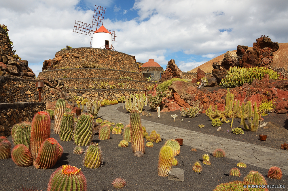Lanzarote Kaktus Pflanze Wüste Reisen Landschaft Himmel Baum Tourismus Architektur im freien Fels Garten Berg im freien Wolken Bäume Felsen Berge Szenerie Stein Dach Pflanzen Park Blume alt Urlaub Gebäude landschaftlich historischen Schlucht Tourist Blumen natürliche Stroh Südwesten Geschichte Kirche Sommer Stadt bunte Klippe Sand historische sonnig Hügel Turm Wald Gras Pfad Saison Wasser Kürbis Schloss nationalen fallen Wahrzeichen Strauch Religion Haus stachelige Antike Wolke Panorama außerhalb Schutzüberzug woody plant Ziel Stadt Farbe Darm-Trakt Flora Sonne Licht Herbst Kakteen Struktur Aushöhlung Orange Gartenarbeit trocken Mauer Fluss Meer cactus plant desert travel landscape sky tree tourism architecture outdoors rock garden mountain outdoor clouds trees rocks mountains scenery stone roof plants park flower old vacation building scenic historic canyon tourist flowers natural thatch southwest history church summer city colorful cliff sand historical sunny hill tower forest grass path season water pumpkin castle national fall landmark shrub religion house prickly ancient cloud panorama outside protective covering woody plant destination town color tract flora sun light autumn cacti structure erosion orange gardening dry wall river sea