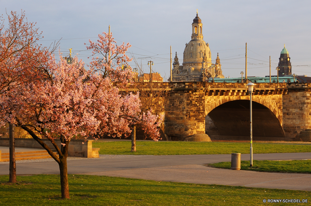 Dresden im Frühling Architektur Palast Gebäude Wahrzeichen Reisen Schloss Turm Stadt Kirche Tourismus berühmte Geschichte Residenz alt Kloster Kathedrale Festung Denkmal Fluss historischen Brücke Haus Religion historische Struktur Kultur Himmel Kuppel Befestigung Stadt Antike religiöse Residenz Urban Tempel Stadtansicht aussenansicht Hauptstadt Universität Platz Dach Tourist Defensive Struktur Gebäude Wohnung mittelalterliche Wasser England Backstein Stein Landschaft Straße traditionelle Orthodoxe Museum Kreuz Gras Roman Baum Mauer Sommer architektonische Tag Platz glauben Attraktion Bogen Stil landschaftlich Urlaub Kapelle Besichtigungen Häuser heilig St. Reiseziele groß im freien Zentrum religiöse Ziel im freien Urlaub Reflexion nationalen Sonnenuntergang Sonnenlicht architecture palace building landmark travel castle tower city church tourism famous history residence old monastery cathedral fortress monument river historic bridge house religion historical structure culture sky dome fortification town ancient religious residence urban temple cityscape exterior capital university place roof tourist defensive structure buildings dwelling medieval water england brick stone landscape street traditional orthodox museum cross grass roman tree wall summer architectural day square faith attraction arch style scenic holiday chapel sightseeing houses holy saint destinations great outdoor center religious destination outdoors vacation reflection national sunset sunlight