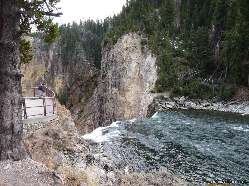 Lower Yellowstone Fall Klippe geologische formation Baum Fluss Wald Fels Berg Landschaft Wasser Stein Park Wildnis Berge Stream Bäume Felsen Reisen Wasserfall Himmel nationalen im freien Schlucht im freien natürliche woody plant landschaftlich Tal fließende Hölzer Umgebung Sommer felsigen Tourismus Wandern Hügel Creek Szene Spitze Pflanze Kiefer Wild Urlaub fallen vascular plant Schlucht Herbst Strömung Wanderung Steine Wolke Wolken Moos Szenerie Holz Abenteuer Bewegung Meer frische Luft Kaskade Küste nass Schnee Frühling Baumstumpf See Insel friedliche fällt Steigung Entwicklung des ländlichen Kanal Bereich Erhaltung Tag Aufstieg Belaubung rasche klar Landschaften Becken Reinigen Tourist kalt Wanderweg natürliche depression Bereich macht Reise gelassene Paradies Küste Ziel Eis Landschaft Sonne ruhige Gras Land Saison Blatt cliff geological formation tree river forest rock mountain landscape water stone park wilderness mountains stream trees rocks travel waterfall sky national outdoors canyon outdoor natural woody plant scenic valley flowing woods environment summer rocky tourism hiking hill creek scene peak plant pine wild vacation fall vascular plant ravine autumn flow hike stones cloud clouds moss scenery wood adventure motion sea freshness cascade coast wet snow spring snag lake island peaceful falls slope rural channel area conservation day ascent foliage rapid clear scenics basin clean tourist cold trail natural depression range power trip serene paradise coastline destination ice countryside sun tranquil grass country season leaf