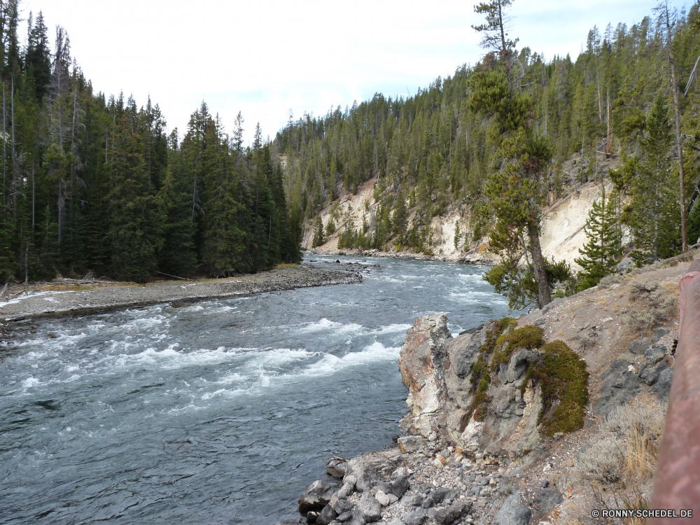 Lower Yellowstone Fall Wald Landschaft Fluss Baum Berg Wasser Schnee Fels Bäume Stream Park Berge Wildnis Himmel Kiefer Stein Felsen Winter landschaftlich Reisen Wetter Land im freien Klippe im freien Eis See Steigung Hölzer Aufstieg geologische formation Tal kalt Umgebung natürliche Creek felsigen Sommer Tourismus Urlaub nationalen Szenerie Tag Saison fließende Bereich Szene Wolke Spitze Ufer Frost Wild Meer Tanne Hügel Sonne friedliche Ozean Wasserfall gefroren Entwicklung des ländlichen Bewegung Strömung Küste Gletscher Herbst Frühling am See Wolken fallen Land Landschaften sonnig Landschaft schneebedeckt Kanal Küste Holz Grat Schlucht Gras rasche Gelände Strand Steine woody plant Birke Reflexion Branch Hochland frisch Barrier forest landscape river tree mountain water snow rock trees stream park mountains wilderness sky pine stone rocks winter scenic travel weather land outdoors cliff outdoor ice lake slope woods ascent geological formation valley cold environment natural creek rocky summer tourism vacation national scenery day season flowing range scene cloud peak shore frost wild sea fir hill sun peaceful ocean waterfall frozen rural motion flow coast glacier autumn spring lakeside clouds fall country scenics sunny countryside snowy channel coastline wood ridge canyon grass rapid terrain beach stones woody plant birch reflection branch highland fresh barrier